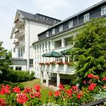 Hotel Pictures: Vitalhotel Weisse Elster, Bad Elster