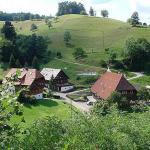 Vogtadeshof, Wolfach