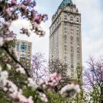Add review - The Pierre, A Taj Hotel, New York