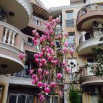 ホテル写真: Mellia Residence, ラヴダ