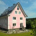 Hotel Pictures: Gästehaus Villa Ruth, Wildbergerhütte