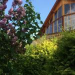 Carpathian Log Home,  Bran