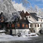 Hotel Pictures: Hotel und Restaurant Köhlerhütte - Fürstenbrunn, Beierfeld