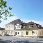 Hotel Pictures: Guest House U Zlatého Jelena, Žinkovy