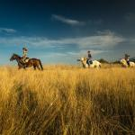Ranch Terra, Irinovac
