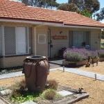 ホテル写真: Yellow Gum Bed and Breakfast, Katanning