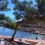Poljana Camping Village Resort, Mali Lošinj