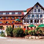 Hotel Pictures: Hotel Gasthof Löwen, Marschalkenzimmern