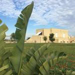 Masseria Gelsi B&B and Events, Torre Chianca