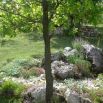 Photos de l'hôtel: Privatni smještaj Romansa, Čitluk
