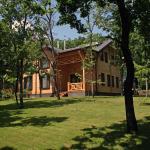 Villa Elena,  Ruseştii Noi