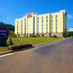 Hampton Inn and Suites Adairsville/Calhoun Area, Adairsville