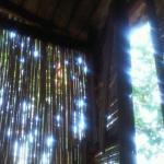 Olympia Treehouse, Cıralı