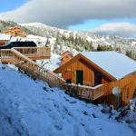 Hotel Pictures: Alpenchalet Klippitztörl, Klippitztorl