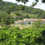 La Fontaine, La Roque-sur-Pernes