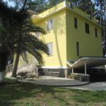 Yellow House, Grigoleti