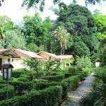 Ecolodge Bukit Lawang, Bukit Lawang