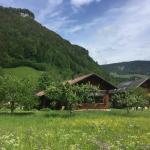 Fotografie hotelů: Ferienhaus Hager, Mellau