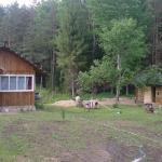 Wolf House,  Lisi Gorki