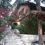 Hotel Pictures: Bratila Family Hotel, Alfatar