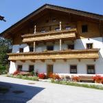 Hotel Pictures: Landhaus Ganzer, Niedernsill
