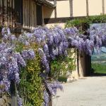 Hotel Pictures: Gite du Paradis, Vieuzos