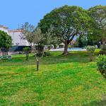 Rosmare, Alcudia