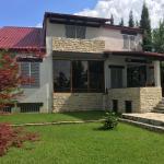 Tbilisi Tskneti Mountain Villa,  Tbilisi City