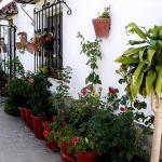 Hotel Pictures: Casa Rústica Santuario de la Luz, Tarifa