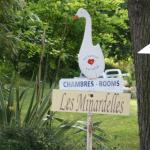 Chambre d'Hôtes Les Minardelles, Saint-Jean-Poutge