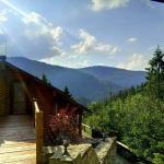 Villa Alpiyka, Slavske
