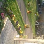 Linda Home, Svanesund