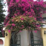 Artemidos Apartment, Agia Marina Aegina