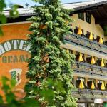 Hotelfoto's: Hotel Berghof Graml, Hallwang