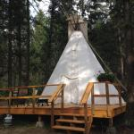 Hotel Pictures: YD Guest Ranch, Ashcroft