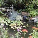 Gartenwohnung Gretl mit Biotop in Seenähe,  Seeboden