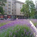 Apartment Letná 2,  Košice