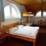 Hotel Pictures: Otevřená Náruč Pension, Letovice