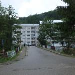 Casa Durdun,  Brădetu
