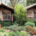 Wildebeest Eco Camp, Nairobi
