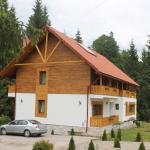 Arnica Montana, Arieşeni