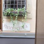 Palchetti Palace Apt. 4, Florence