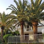 Three Palms Apartments Novakovic, Petrovac na Moru