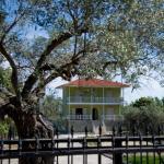 Villa Anna, Vourvourou