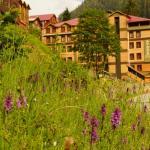 Ayder Resort Hotel, Ayder Yaylasi