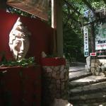 Yaxkin Hostel-Palenque, Palenque