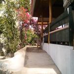 Bougainvillea Paradise Campground, Dauis