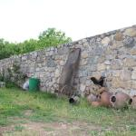 Φωτογραφίες: Tatev 1 Bed and Breakfast, Tat'ev