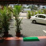 Palm Grove Villa,  Cochin