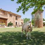Hotel Pictures: Agroturismo Es Quatre Cantons, Binissalem
